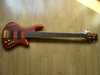 schecter_stiletto_studio5_2red_001.jpg