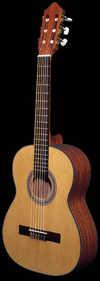 guitar99007434.jpg