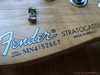 fender_stratocaster_std_31sb_019.jpg
