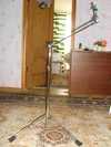stp64291.jpg