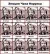 www_druzi_ru_143_531_20060426_3969.jpg