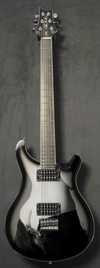 gitara7.jpg