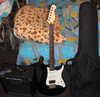 Gitara_komb_chehol.jpg