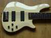 schecter_c5_custom_white_002.jpg