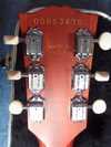 sdc10358.jpg