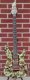 schecter_2009_diamond_series_c1_camo_fr_limited_edition_6string_electric_guitar.jpg
