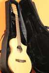 gitara_v_chehle.jpg