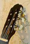 gitar3__kopiya.jpg